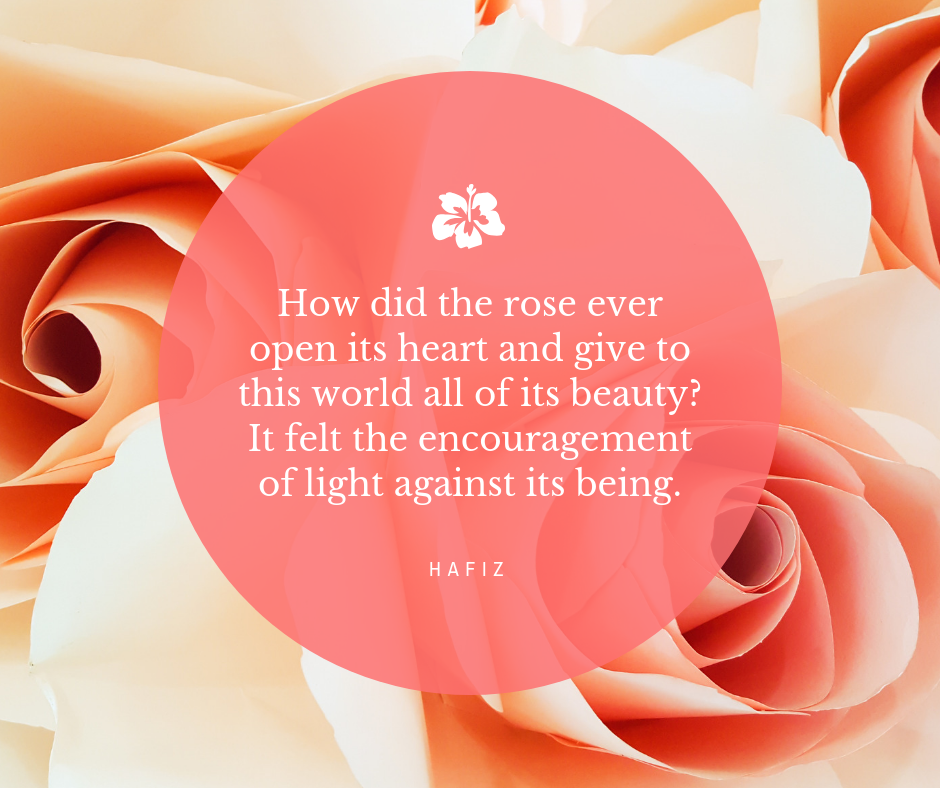 """Close up of roses with the quote """"How did the rose ever open it's heart and give to the world all of its beauty?  It felt the encouragement of light against its being."""" - Hafiz"""